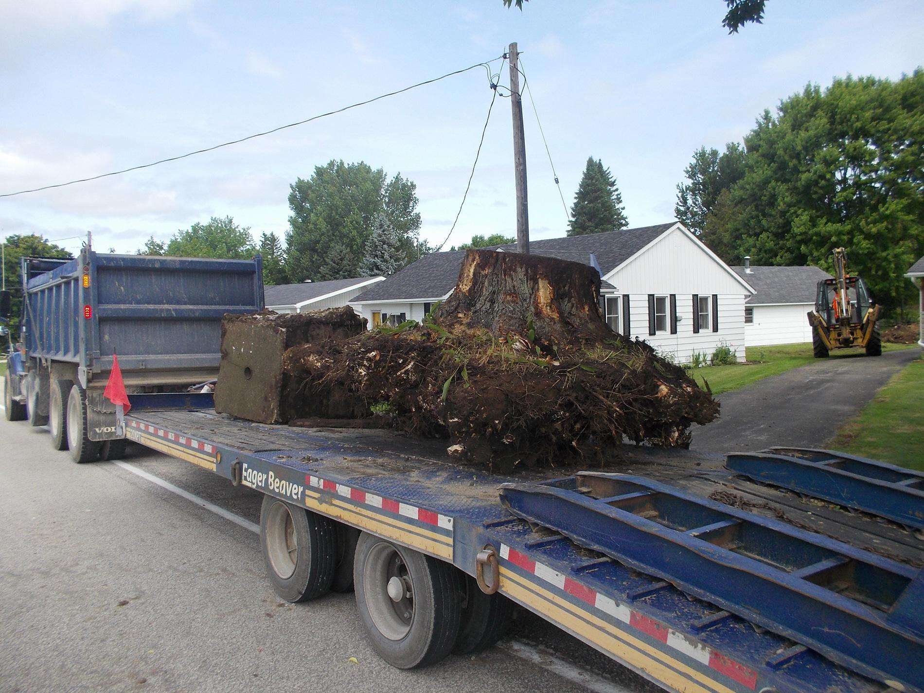 Tree stump on truck
